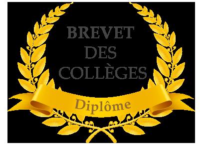 dimplomedubrevet-des-colleges.png