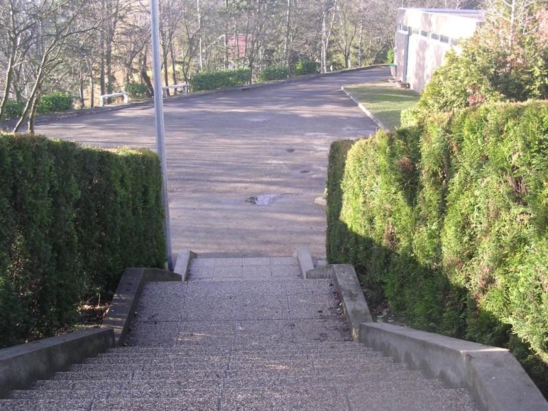 College_Visite_08.jpg